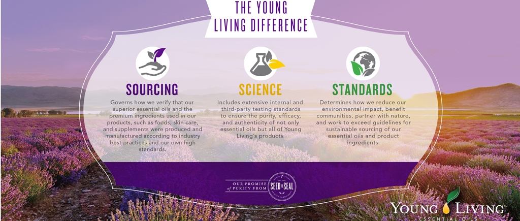 Young Living – The Minty Dropper